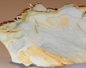 Beautiful Pastel Willow Creek Jasper Slab