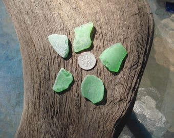 5 Pieces of Green Genuine Gulf of Mexico Sea Glass