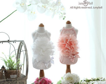 Atria - Designer Handmade flower dress for Pets / Free Shipping