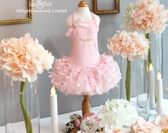 Free Shipping/ Cynthiana - Designer Handmade tutu/ pink ballerina dress  for Dogs and Pets