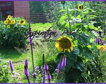 Sunflower Garden Photograph Art Print FREE SHIPPING!
