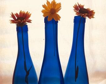 Old Blue Bottles
