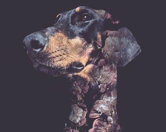 Doberman Dog Flower Portrait – Faunascapes Art Print by WhatWeDo
