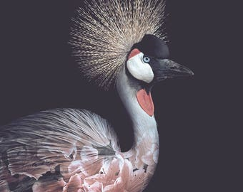 Crowned Crane Flower Portrait – Faunascapes Art Print by WhatWeDo