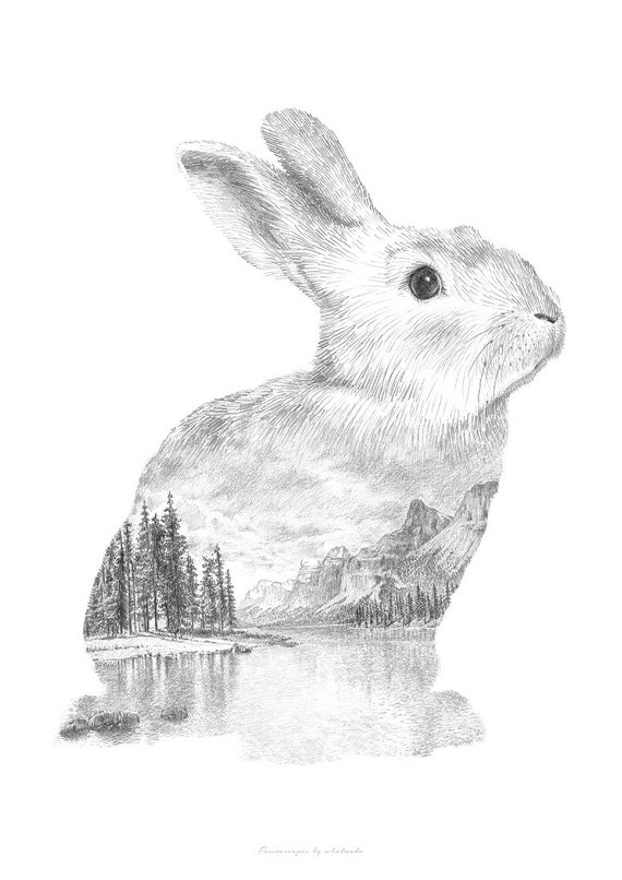 Rabbit Pencil Drawing Faunascapes By Whatwedo Etsy