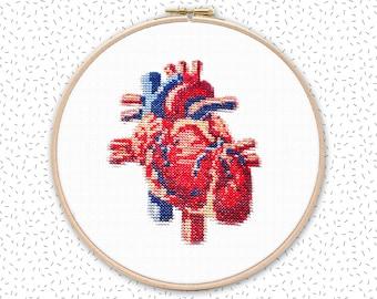 Cross stitch pattern . HUMAN HEART . anatomical drawing embroidery pattern . realistic xstitch chart . nerdy crossstich pattern