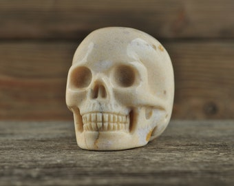 Coral Fossil Crystal Skull, 2 inches! Halloween Decor, Skull Decor, Gothic Home Decor, Memento Mori, Goth Decor, Crystal Decor