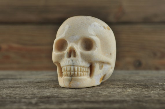 Natural Realistic Coral Fossil Crystal Skull, 2 inches!