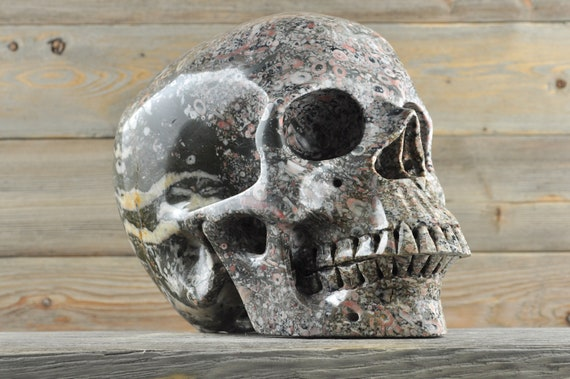 TITAN, Crinoid Fossil Crystal Skull, One-of-a-kind!!!
