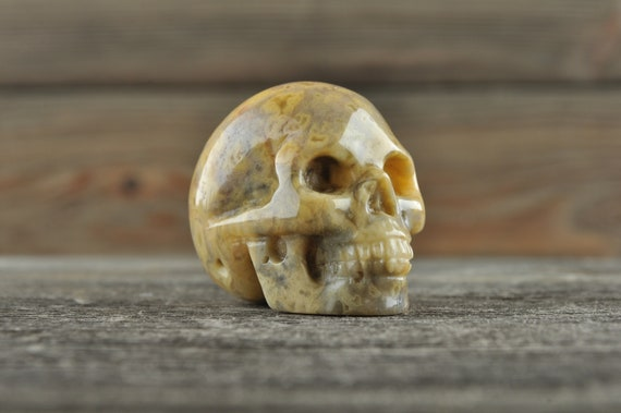 Natural Crazy Lace Agate Crystal Skull, Mini