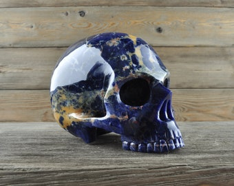 Sodalite, Crystal Skull, Large, Halloween Decor, Skull Decor, Gothic Home Decor, Memento Mori, Goth Decor, Crystal Decor