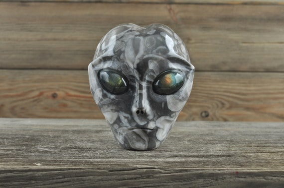 Gorgeous Shell Fossil with Labradorite Alien Starbeing Crystal Skull, 3 inches!