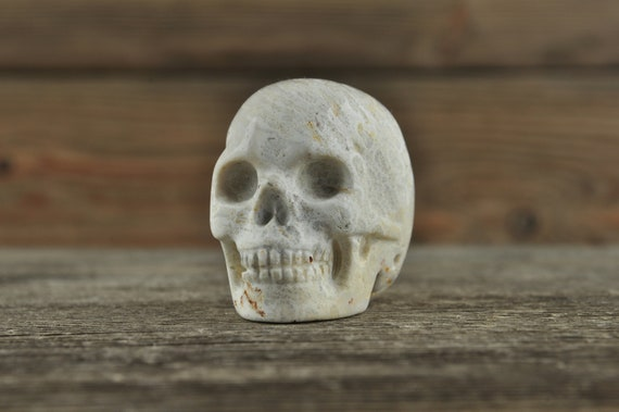 Natural Realistic Coral Fossil Crystal Skull, Mini!