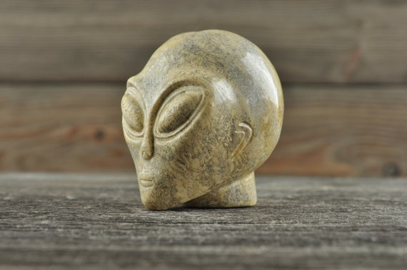 Natural Realistic Coral Fossil Alien Crystal Skull, Mini!