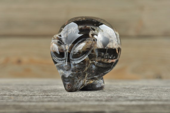 Natural Realistic Jasper Alien Starbeing Crystal Skull, Mini!