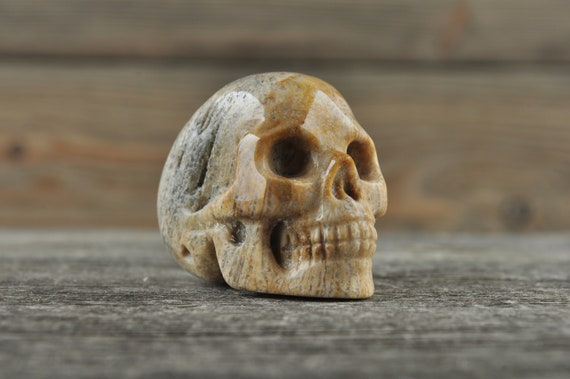 Natural Realistic Coral Fossil Crystal Skull, Mini!