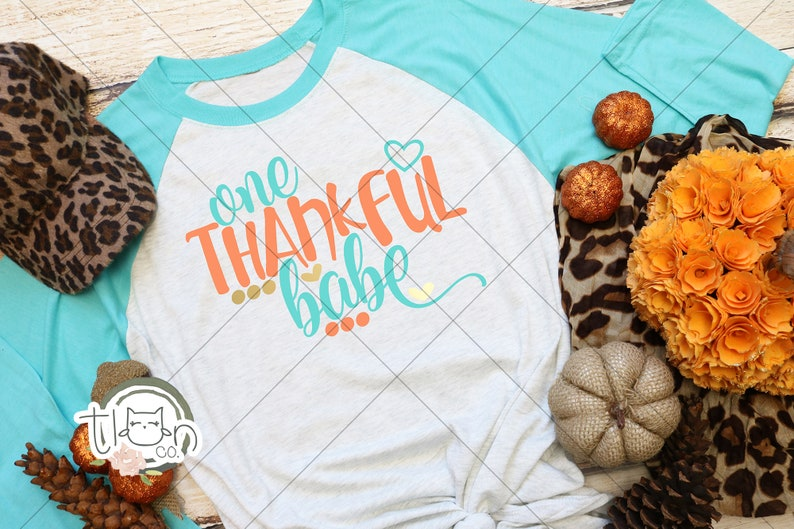 Fall TShirts For Woman  Raglan  One Thankful Babe image 0