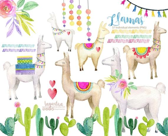 Watercolor Llama Clip Art Etsy
