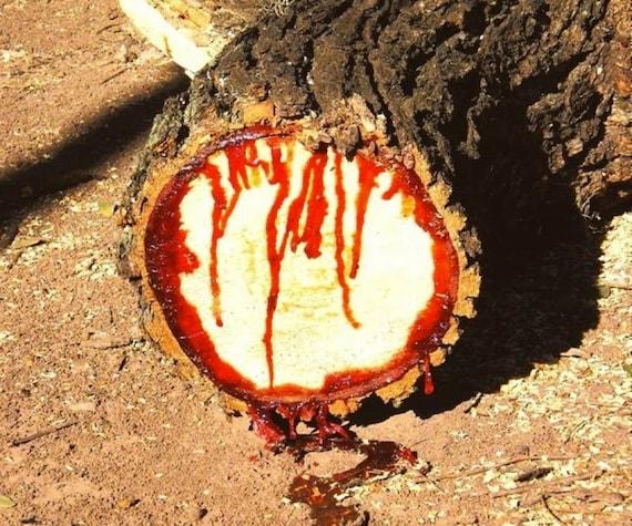 Extracto de Sangre de Drago Grado para cosmética 10 ml.15 | Etsy