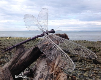 MEGANEURA (Dragonfly) large sculpture, original, handmade bobbin lace in stainless steel and enamelled copper wires with crystal beads