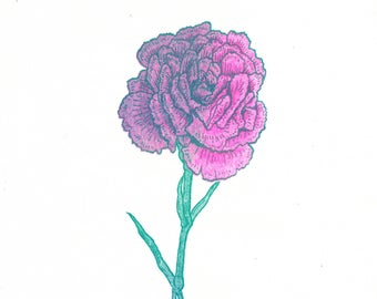 Dyed Carnation risograph art print