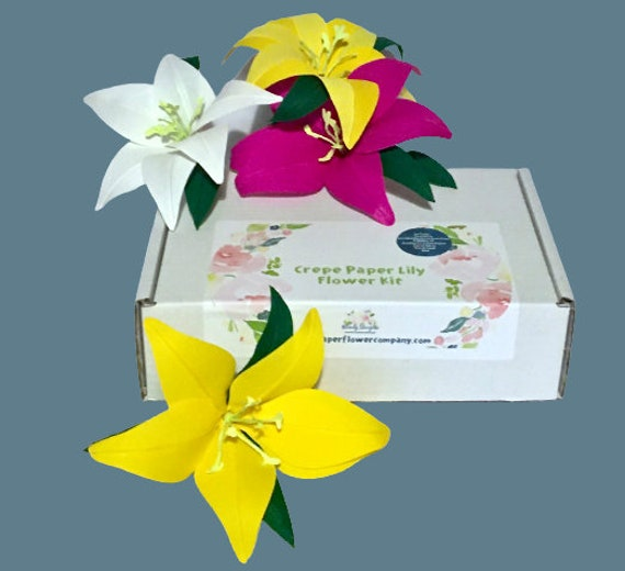Crepe Paper Lily Craft Kit - Perfect for Mothering Sunday