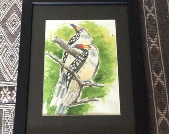 Red-billed Hornbills original ink and watercolor painting, matted and framed