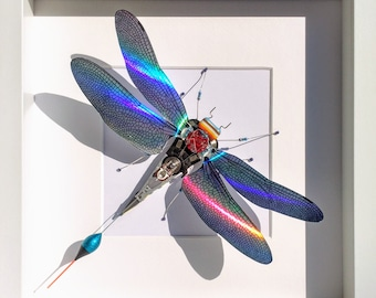 Holographic Insects
