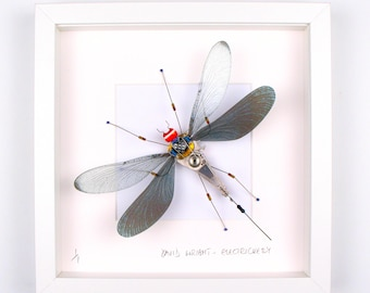 Black Damselfly Framed Wall Art | Recycled Sculpture