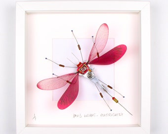Red Damselfly Framed Wall Art | Recycled Sculpture
