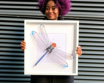 Giant Blue Dragonfly Framed Wall Art | Recycled Sculpture