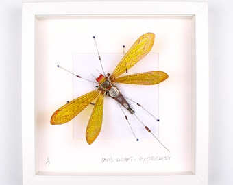 Yellow Antlion Framed Wall Art | Recycled Sculpture