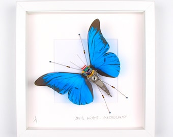 Blue Butterfly Framed Wall Art | Recycled Sculpture