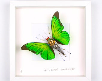 Green Butterfly Framed Wall Art | Recycled Sculpture