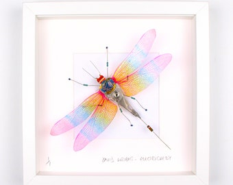 Rainbow Wing Dragonfly Framed Wall Art | Recycled Sculpture