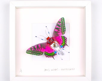Purple Butterfly Framed Wall Art | Recycled Sculpture