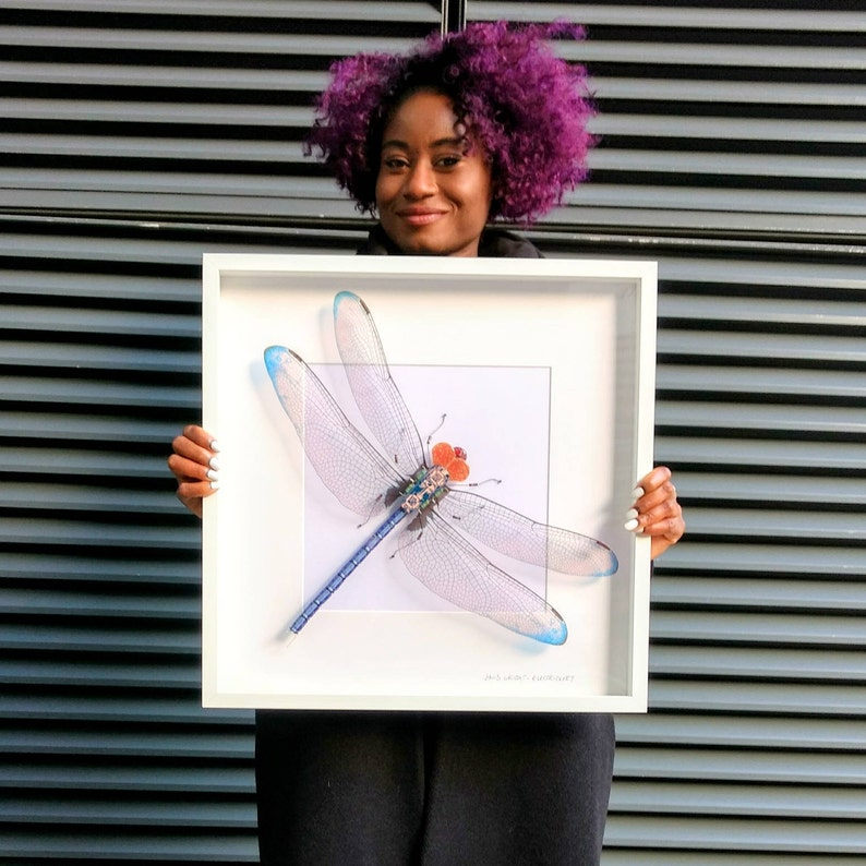 Giant Dragonfly Recycled Art Wings Framed Art Blue Dragonfly image 0