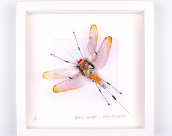 Gold Tip Wing Dragonfly Framed Wall Art | Recycled Sculpture