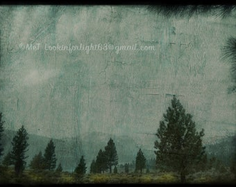 June Lake Landscape | Abstract Nature Art | Mint Rustic Wall Decor | Woodland Print | California Photo | Moody Nature Photo | Wilderness Art