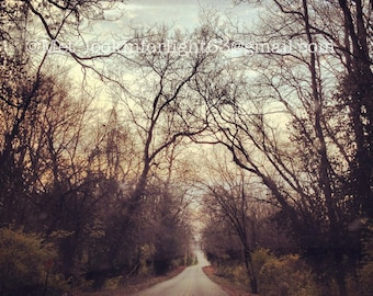 Indiana Photo, Country Road, Winter Trees Photo, Midwest Photo, Journey Art, Instant Digital Download, JPEG file, Wallace Creek Road Indiana
