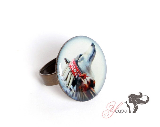 Ring in resin CD10 (2, 5cm in diameter) - support brass - collection La Plume à l'Oreille (CaroLine Dethier photography)