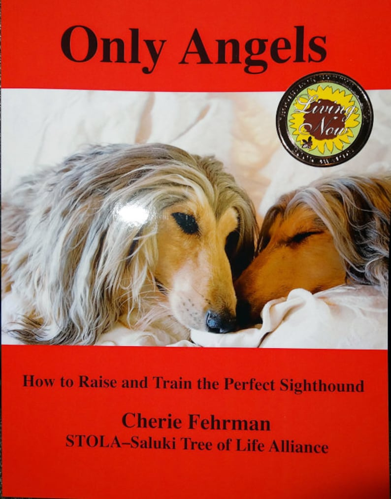 Only Angels Dog Training Book for Sighthounds and Other Breeds image 0