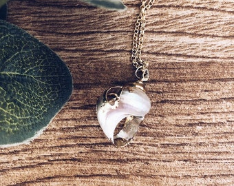 Necklace with golden brass chain and natural shell pendant