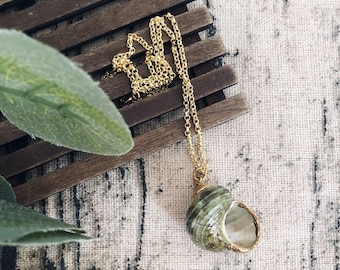 Necklace with chain in golden brass and natural shell
