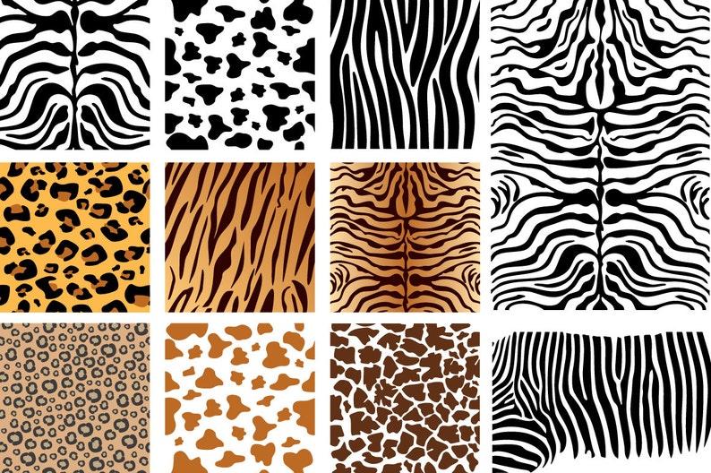 Seamless Patterns Vector Animal Skins