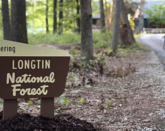 National Forest Sign replica for welcome sign, backyards, gardens, Trophy rooms, Camping, welcome
