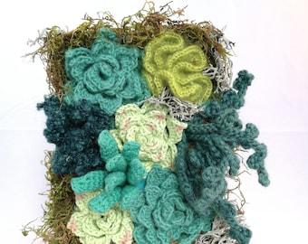 Succulent Wall Hanging - Crocheted Vertical Garden