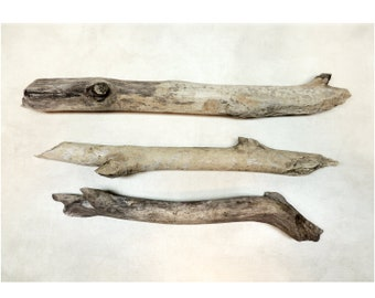 Assemblage or Altered art Crafting 2 Pieces Driftwood size 12 14 to  12 12 long Mixed Media Nautical Beach Decor