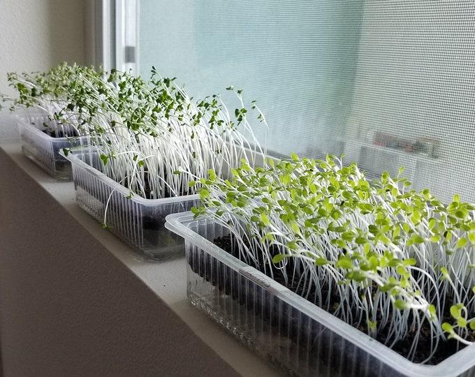 Family MicroFarm, Auto Watering Windowsill Microgreen Kits for 10+ crops