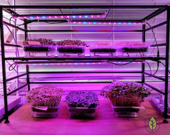 Restaurant & Commercial Microgreen Starter, Trays, Lights, Scale, Seeds, Media 100+ crops